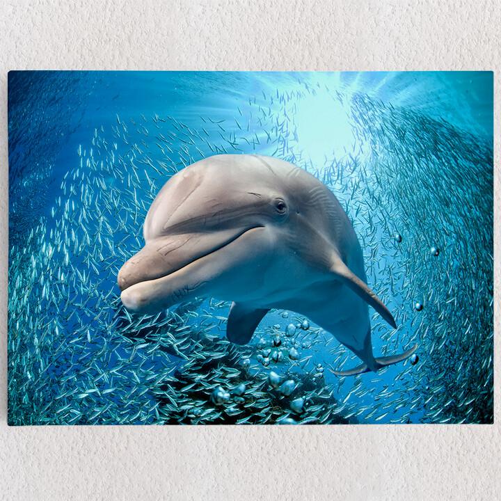 Personalisiertes Leinwandbild Delfin im Meer