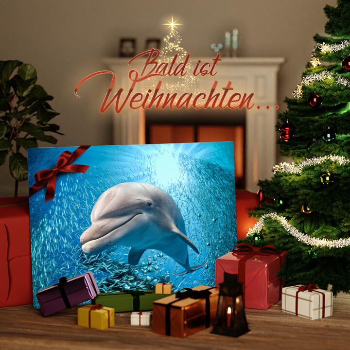 Liebesleinwand zu Weichnachten Delfin im Meer