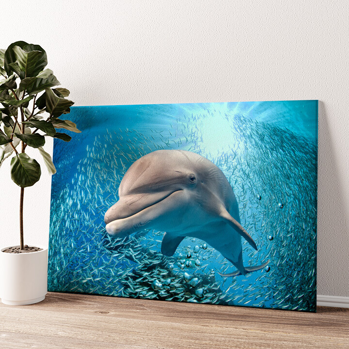 Delfin im Meer Wandbild personalisiert