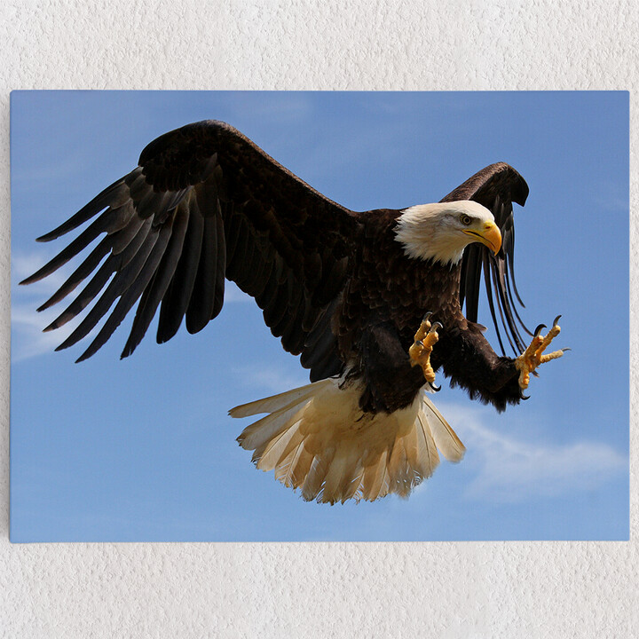 Personalisiertes Leinwandbild Adler