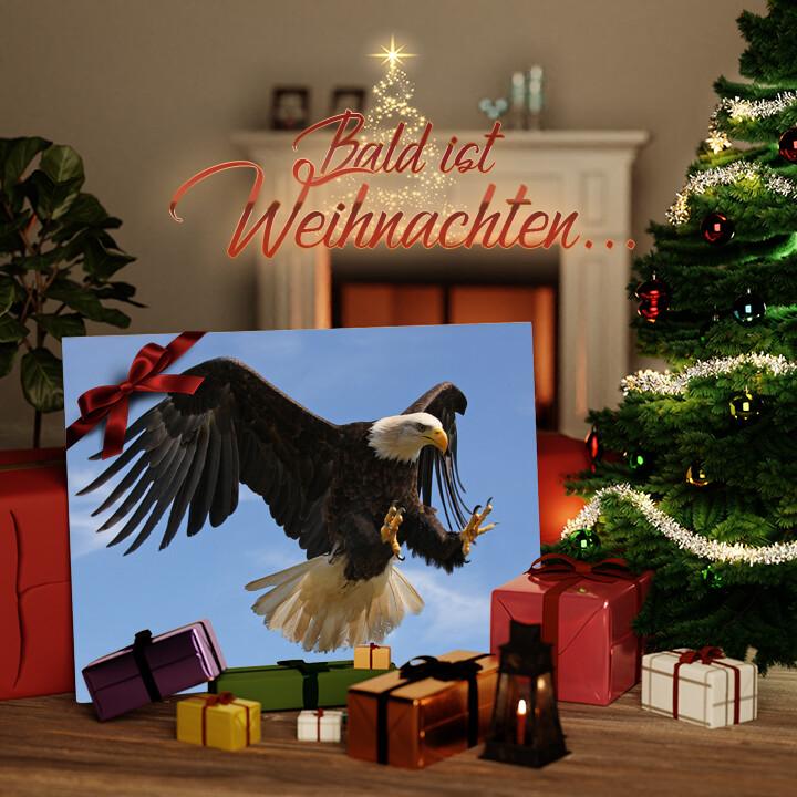 Liebesleinwand zu Weichnachten Adler