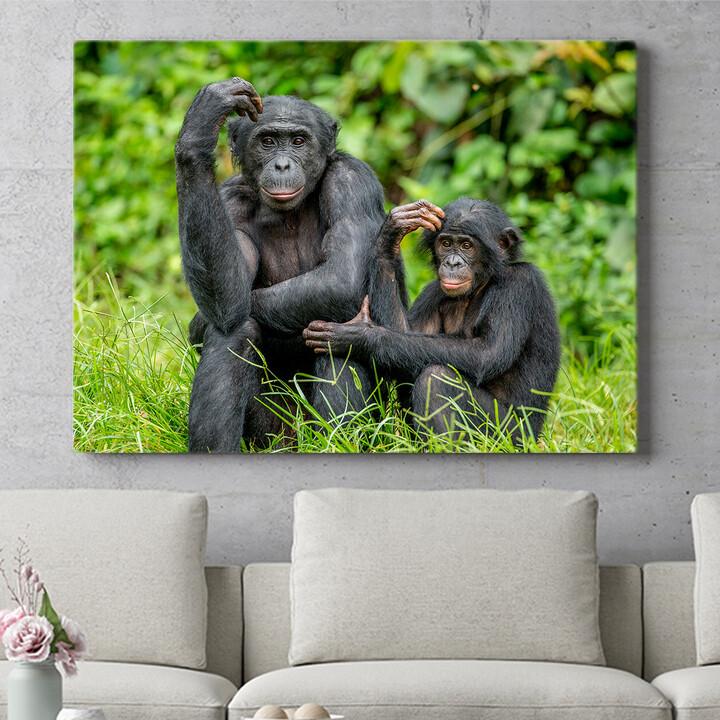 Personalisierbares Geschenk Bonobo im Kongo
