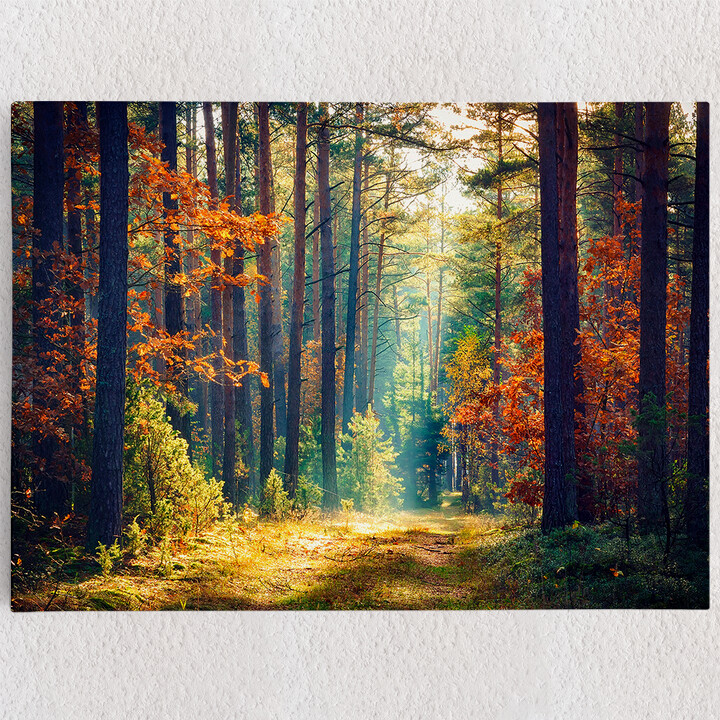 Personalisiertes Leinwandbild Herbstwald
