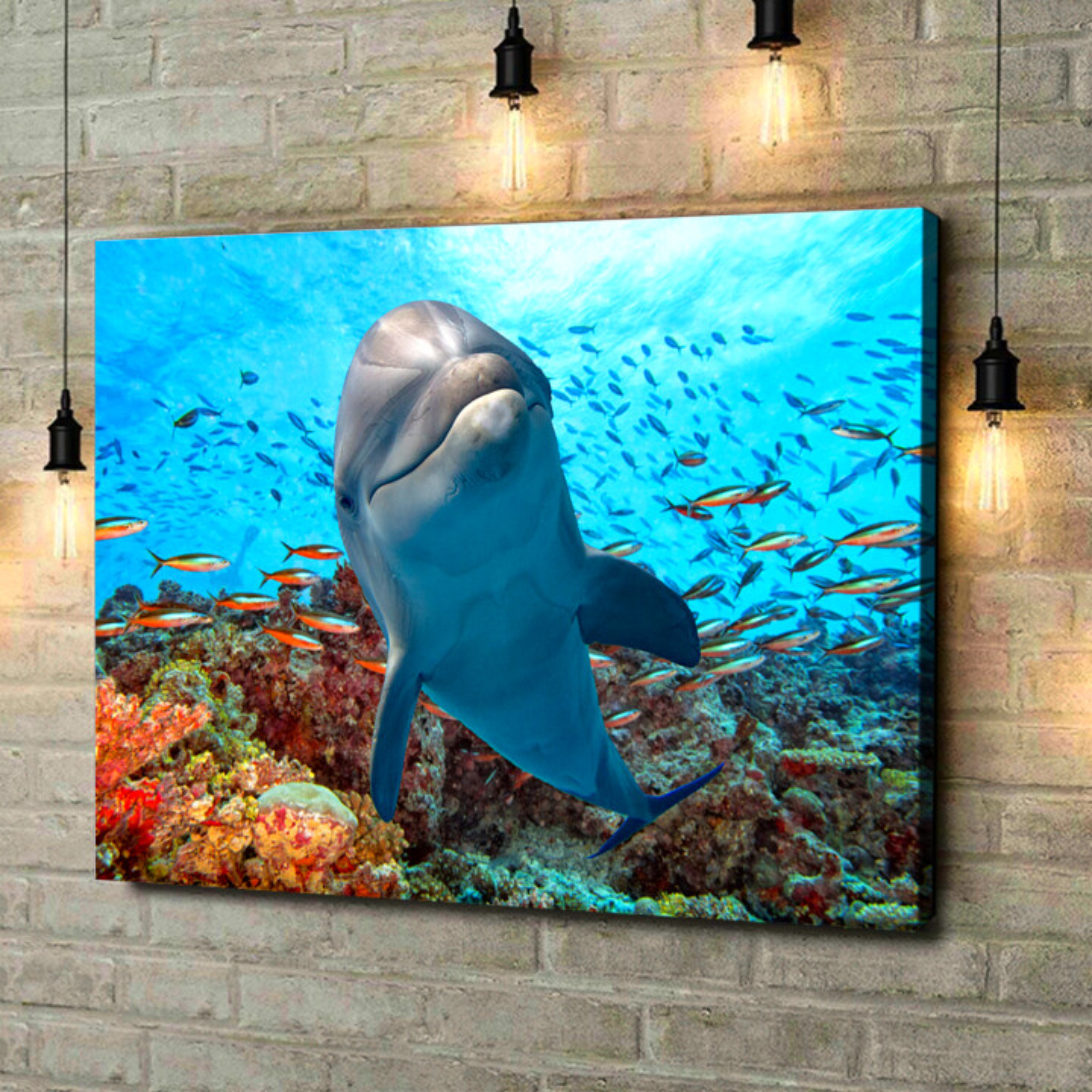 Leinwandbild personalisiert Delfin im Korallenriff