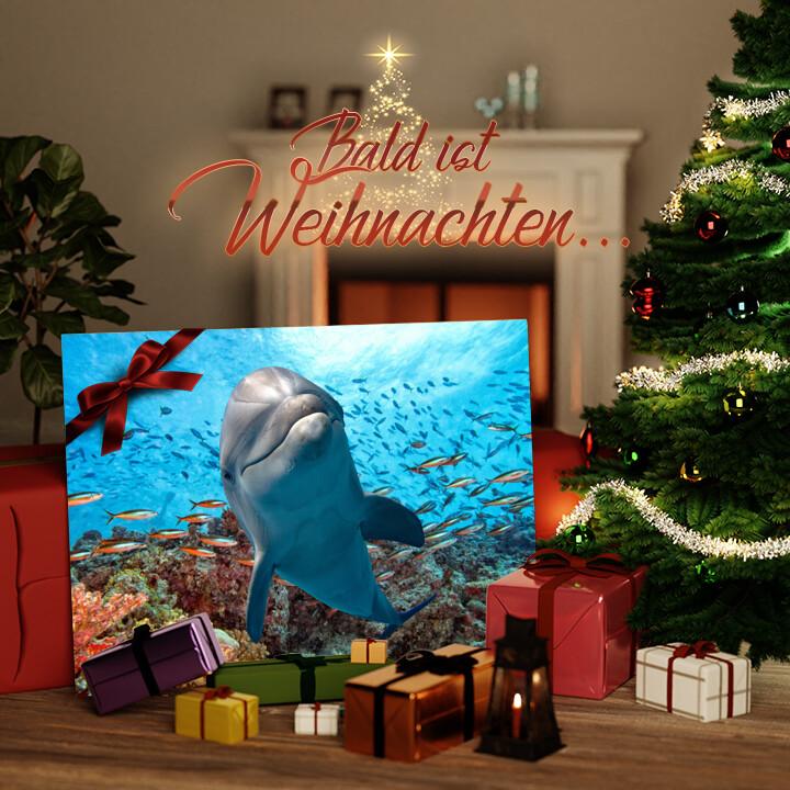 Liebesleinwand zu Weichnachten Delfin im Korallenriff
