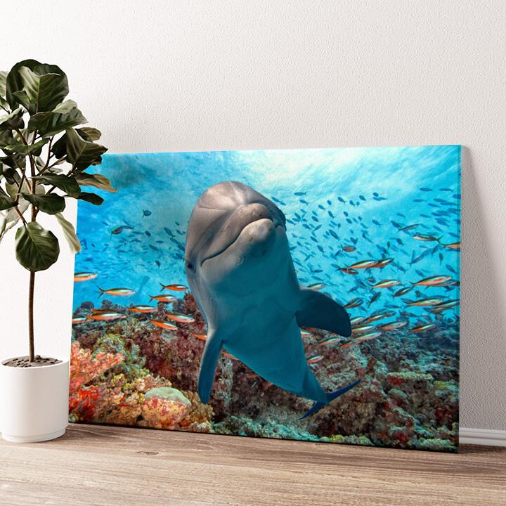 Delfin im Korallenriff Wandbild personalisiert