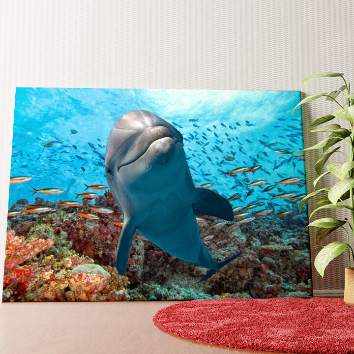 Personalisiertes Wandbild Delfin im Korallenriff