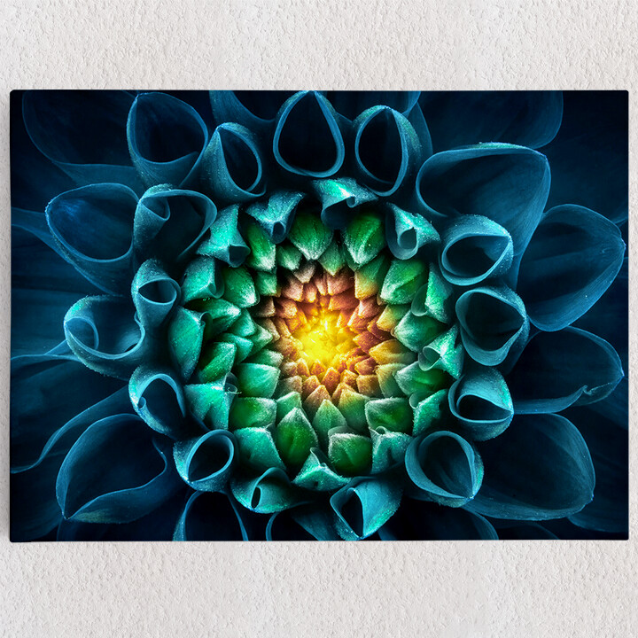 Personalisiertes Leinwandbild Blaugrüne Chrysantheme