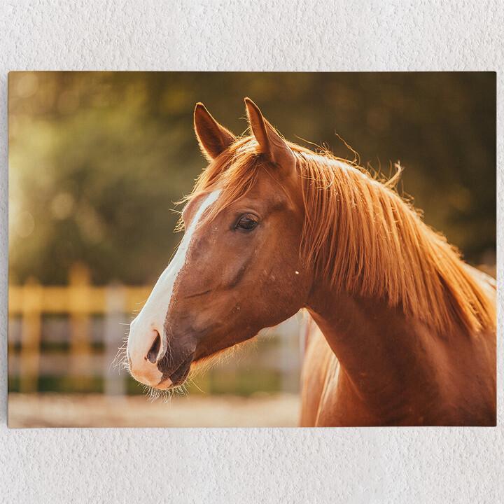 Personalisiertes Leinwandbild Pferd Porträt
