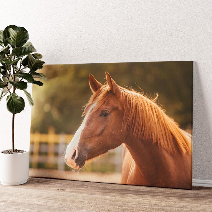 Pferd Porträt Wandbild personalisiert