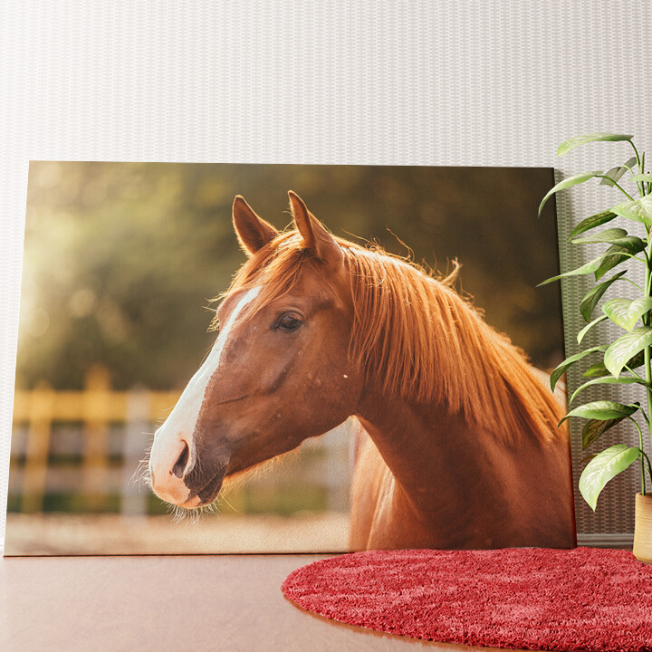 Personalisiertes Wandbild Pferd Porträt