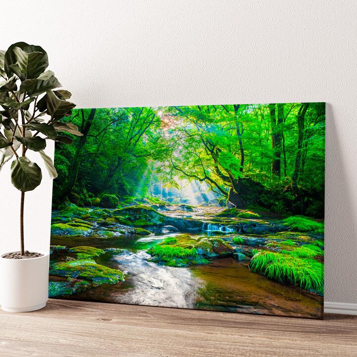Kikuchi Valley Regenwald Japan Wandbild personalisiert