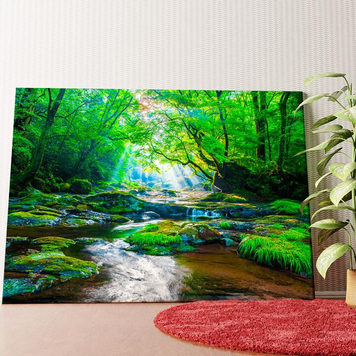Personalisiertes Wandbild Kikuchi Valley Regenwald Japan