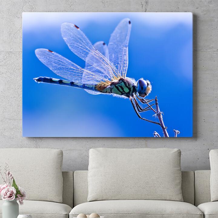 Personalisierbares Geschenk Libelle