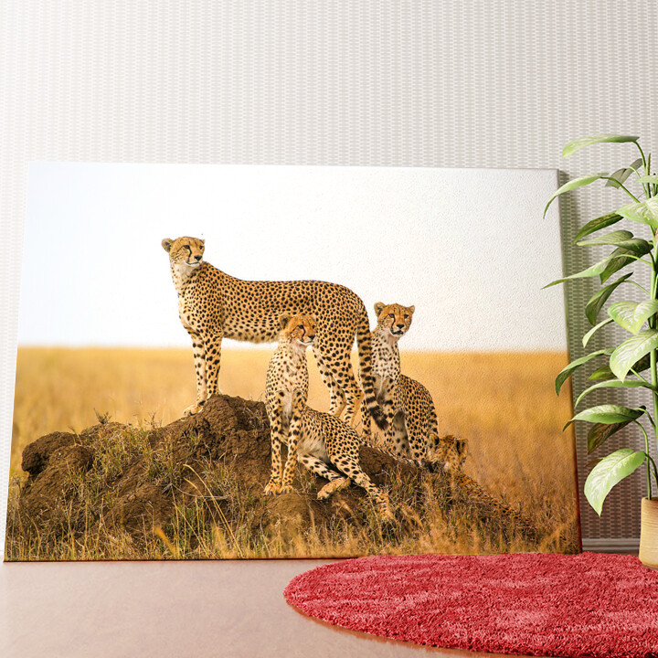 Personalisiertes Wandbild Geparden Serengeti