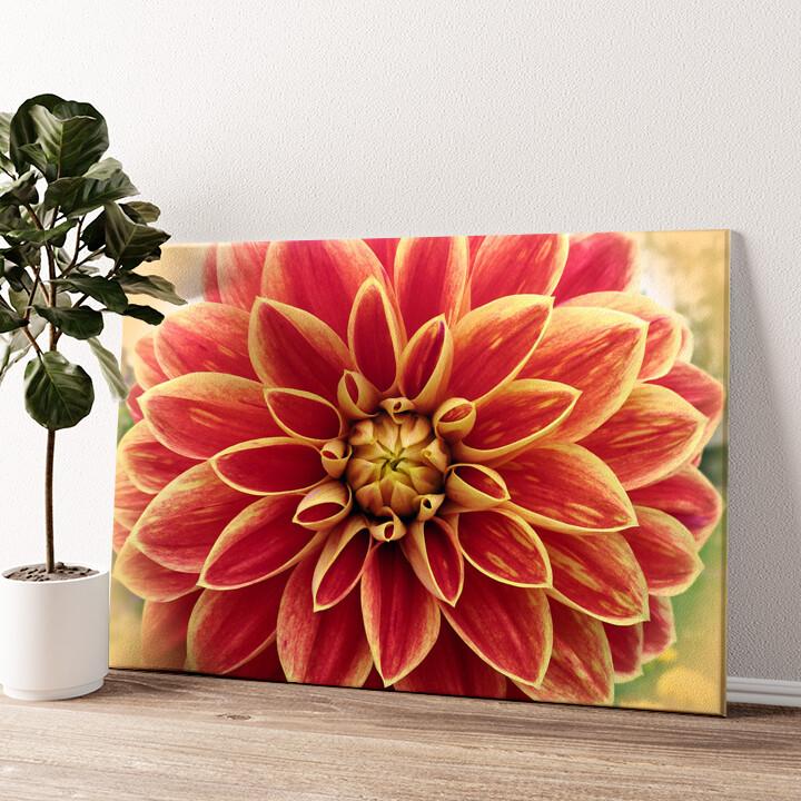 Rote Chrysantheme Wandbild personalisiert