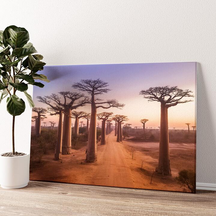 Baobab Bäume Madagaskar Wandbild personalisiert