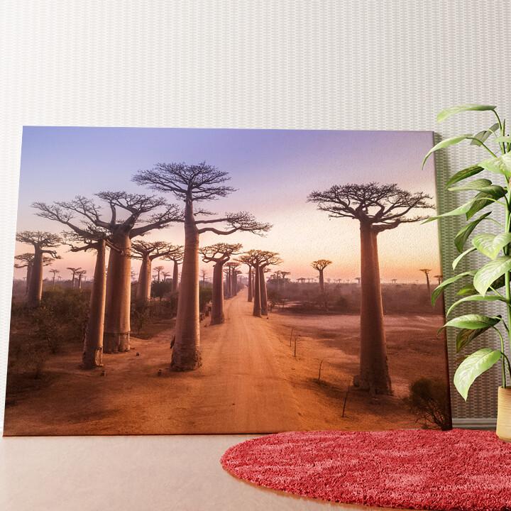 Personalisiertes Wandbild Baobab Bäume Madagaskar