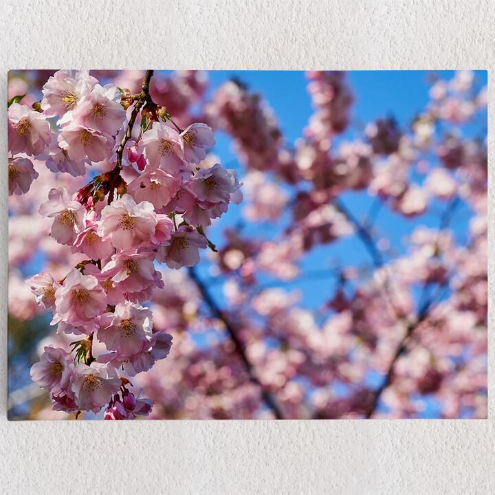 Personalisiertes Leinwandbild Kirschblüten