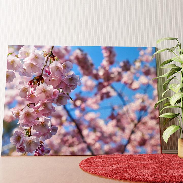 Personalisiertes Wandbild Kirschblüten