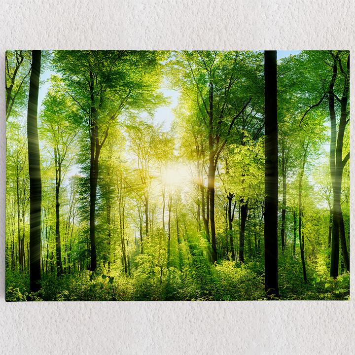 Personalisiertes Leinwandbild Sommerwald