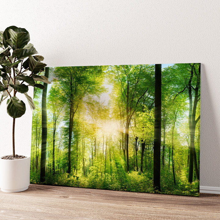 Sommerwald Wandbild personalisiert