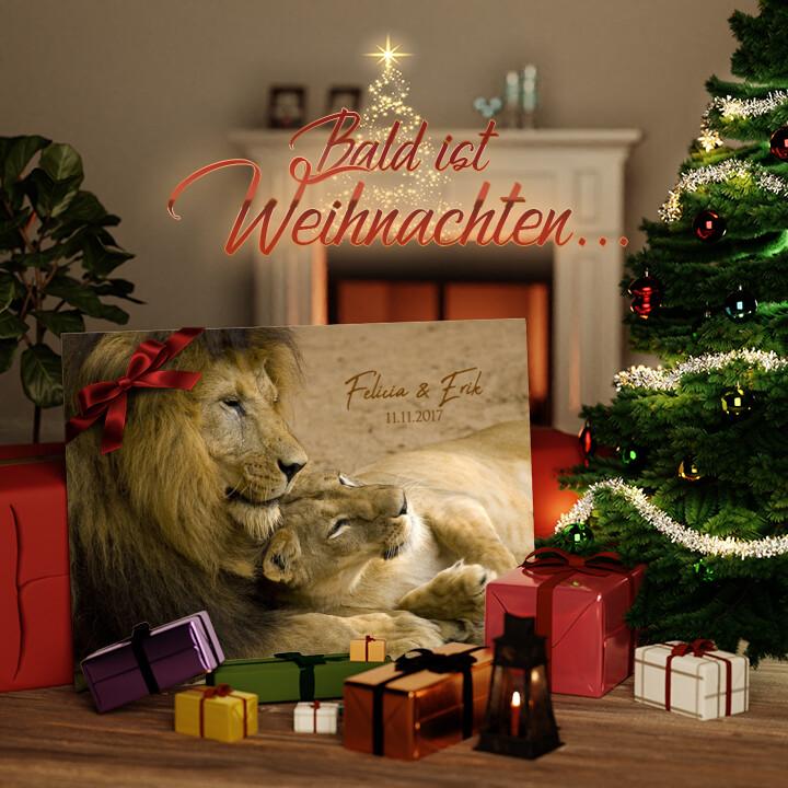 Liebesleinwand zu Weichnachten Lion Love