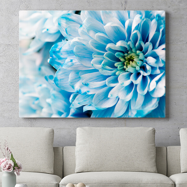 Personalisierbares Geschenk Blaue Chrysantheme