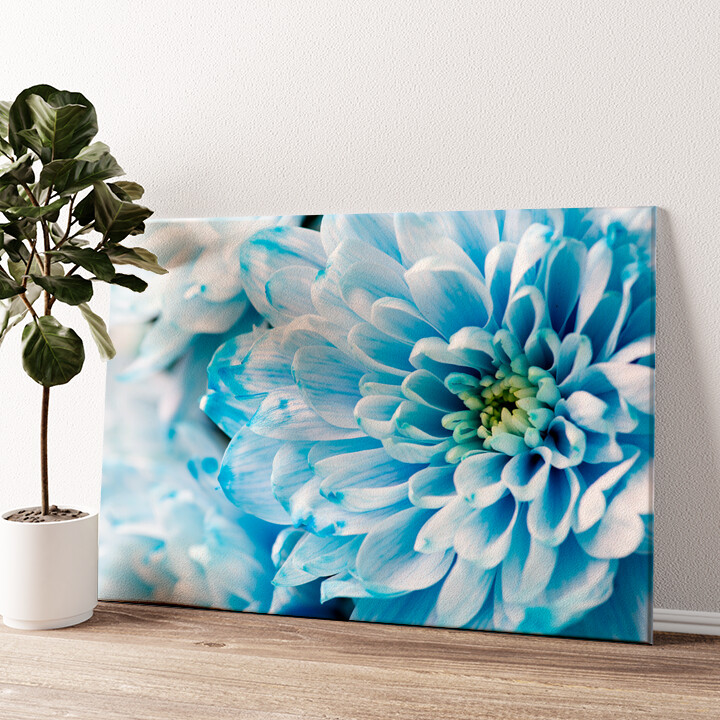 Blaue Chrysantheme Wandbild personalisiert