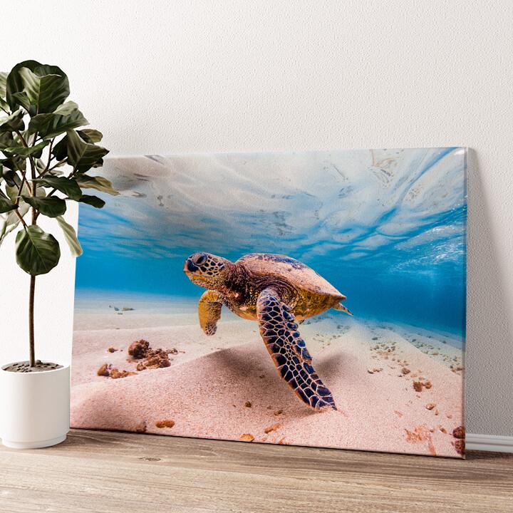 Schildkröte im Meer Wandbild personalisiert