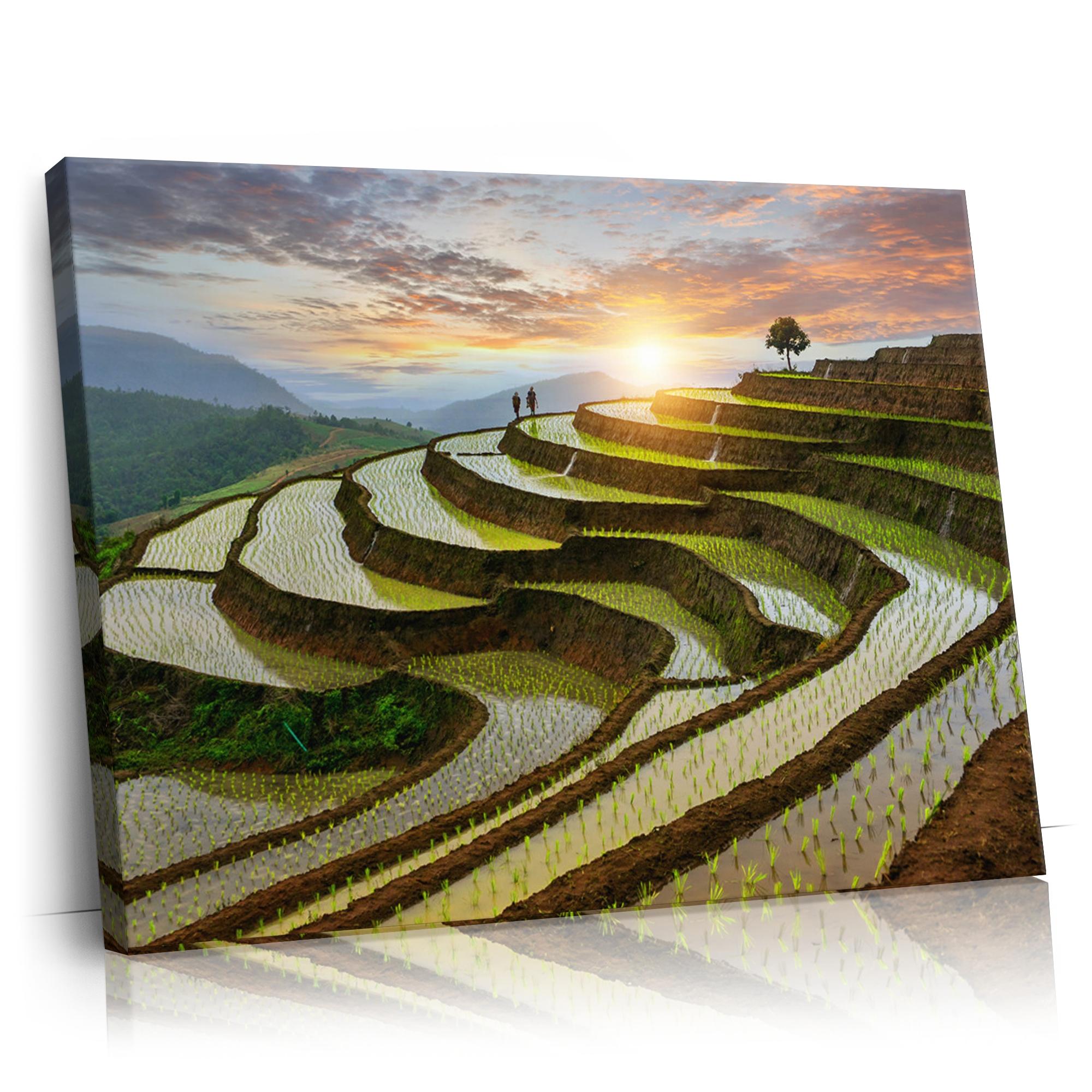 Reisfelder in Pa-Pong-Peang