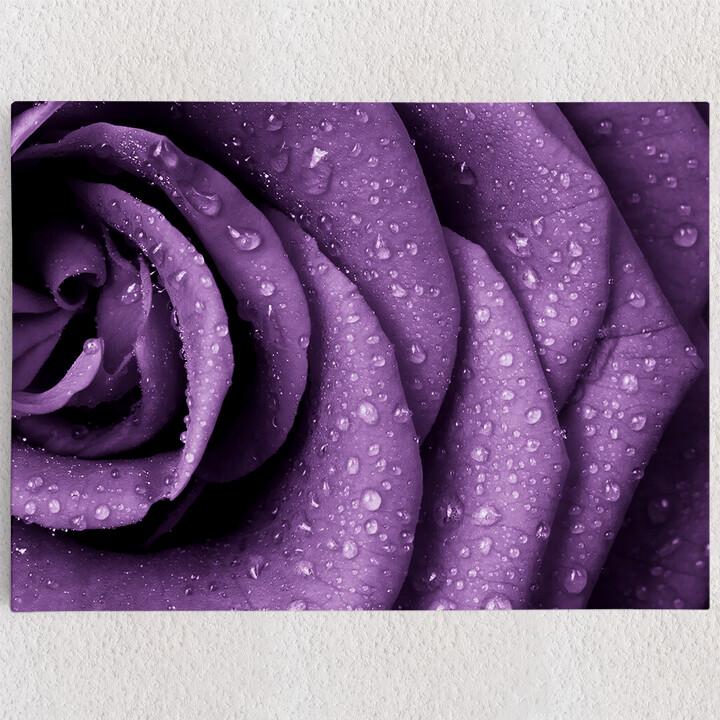 Personalisiertes Leinwandbild Rosenblätter mit Tropfen