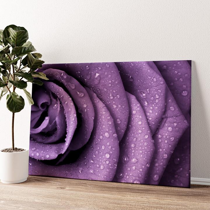 Rosenblätter mit Tropfen Wandbild personalisiert
