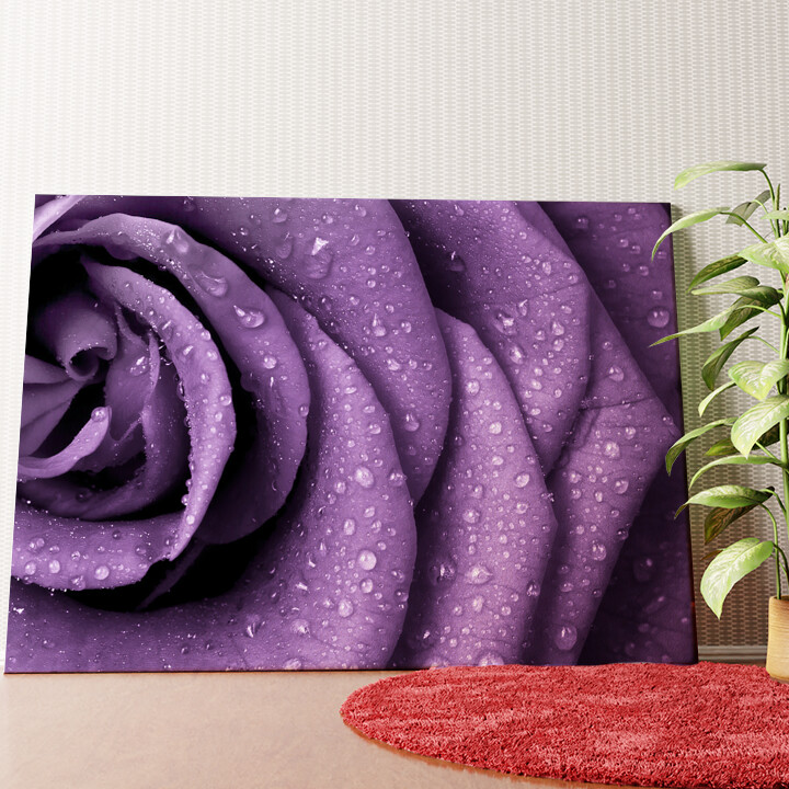 Personalisiertes Wandbild Rosenblätter mit Tropfen