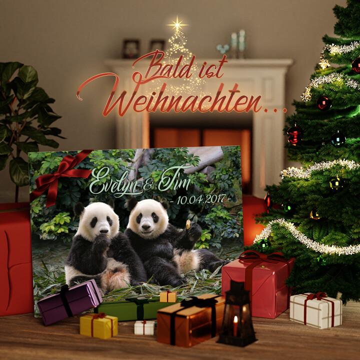 Liebesleinwand zu Weichnachten Pandabären