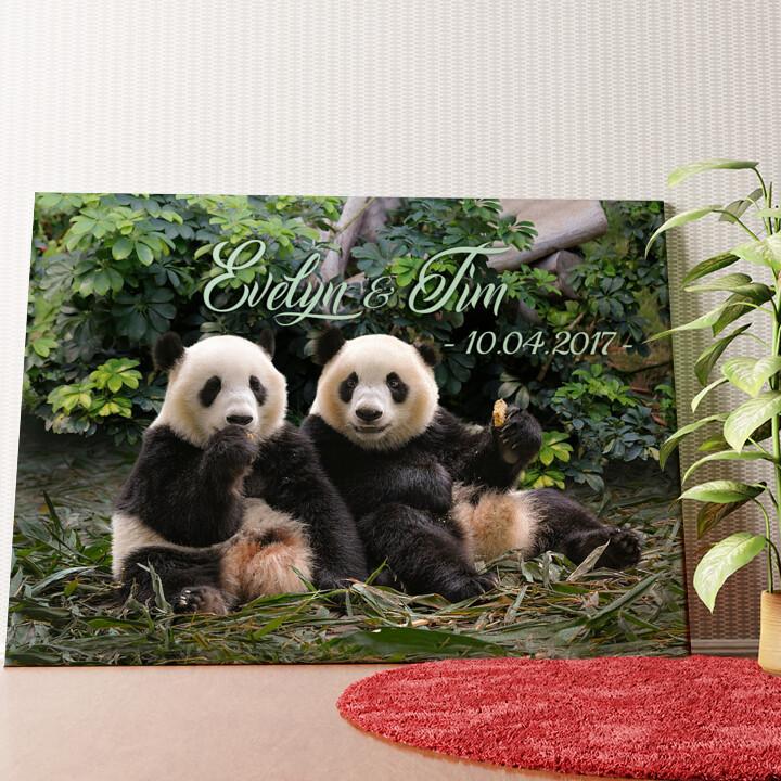 Personalisiertes Wandbild Pandabären
